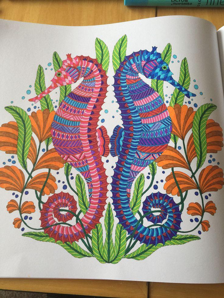 Millie Marotta Sea Horse Tropical Wonderland Art Therapy