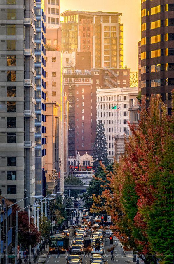 1000+ ideas about Downtown Seattle on Pinterest   Seattle ...