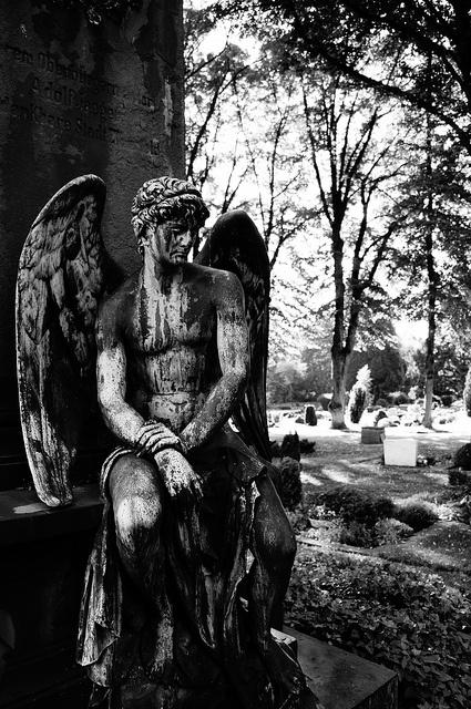 Angel by [ henning ]