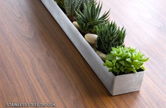 Mini Succulents Tray Brown Thumb Pinterest Planters Trays And Tables