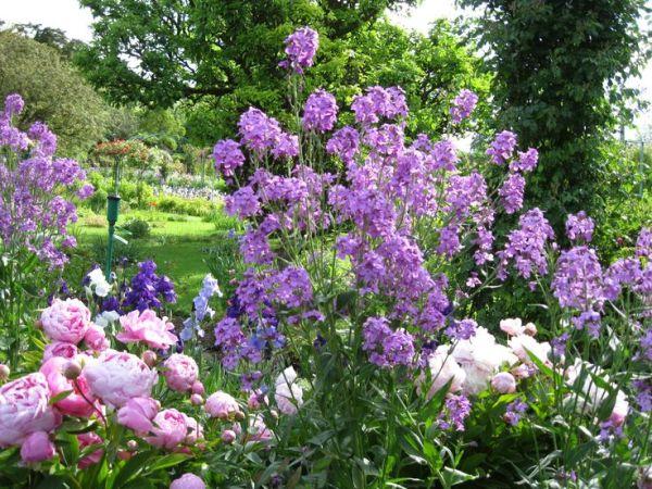 beautiful flower gardens pinterest Beautiful Italian Flower Garden | Gardening | Pinterest