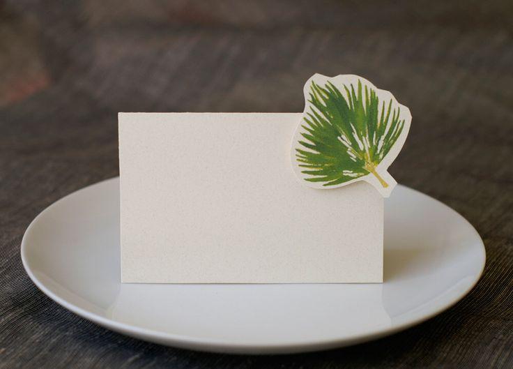 25+ Best Ideas About Fan Palm On Pinterest
