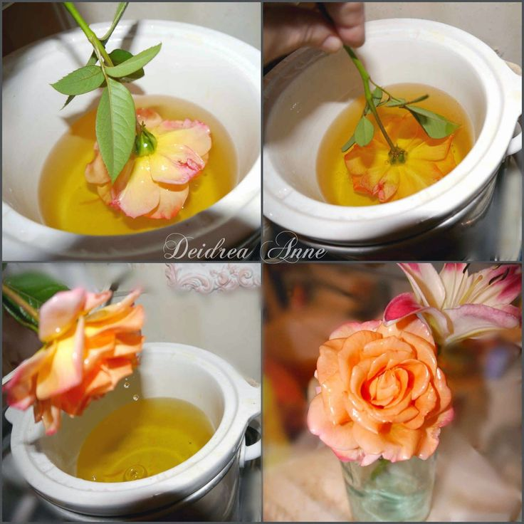 Did you know you can save those beautiful blooms in your garden forever? Just dip in any wax and let dry!