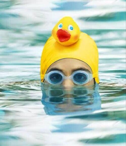 110 Best Images About Rubber Ducks On Pinterest Luxury