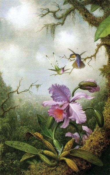 Painting Orchids Fine Art American