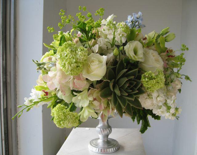 Http://www.flowerpicturegallery.com/d/12948-2/Modern