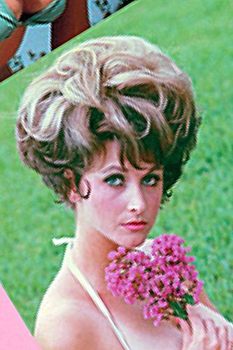 17 Best Images About Bouffant Hairdos On Pinterest Updo