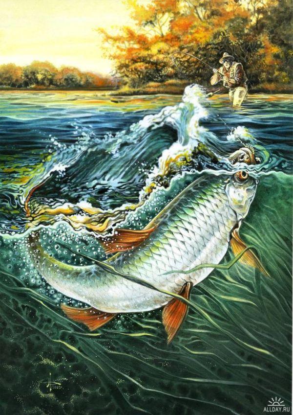 картинки для декупажа рыбалка фото: 21 тыс изображений ...