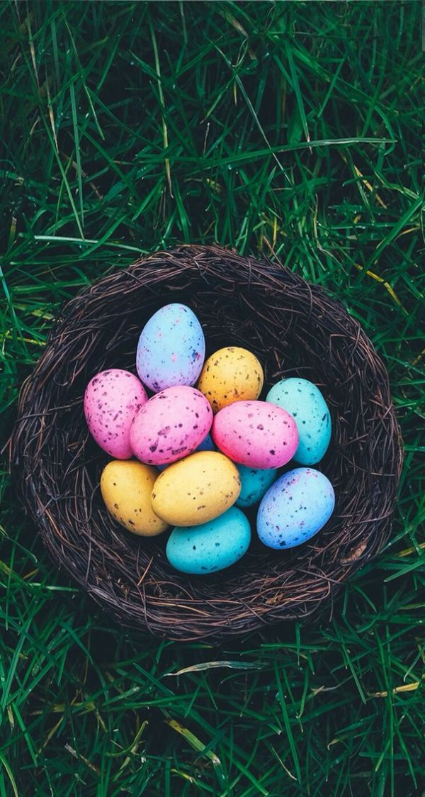 Wallpaper iPhone Easter | Wallpapers IPhone ⚪️ | Pinterest ...
