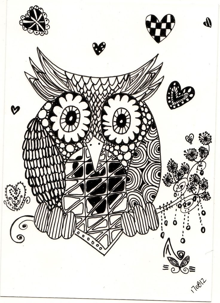 Zentagle Drawing Zentangle Owl Owls Black Amp White