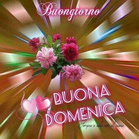 118 Best Images About Buona Domenica On Pinterest Floral