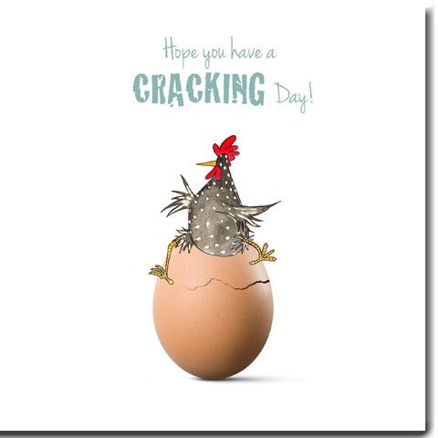 Cracking Day Birthday Cards We Love These Funky Chicken