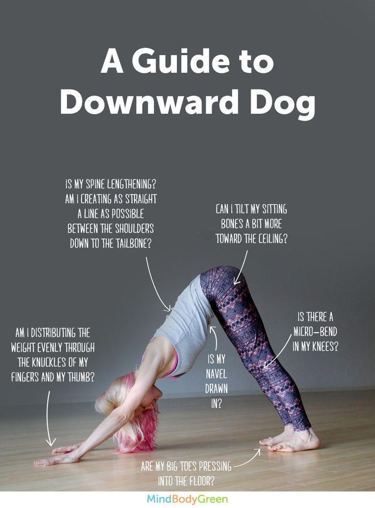 Downward Dog Pose #YogaPoses