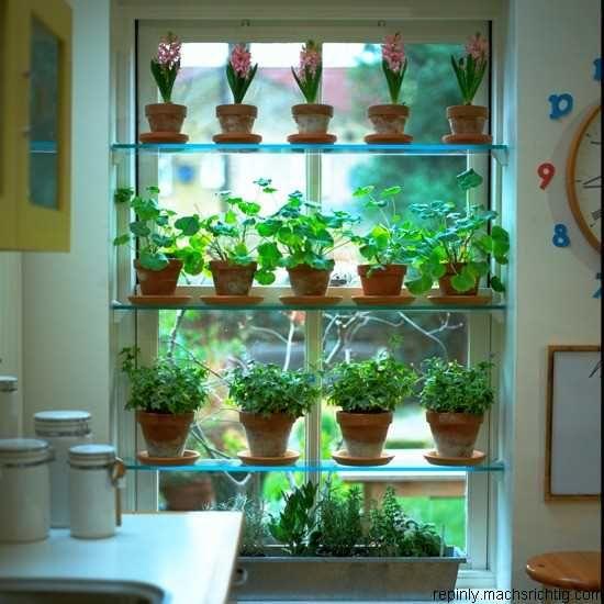 indoor gardening lights Grow Lights Indoor Gardening - WoodWorking Projects & Plans