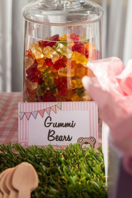 "Photo 1 of 14: Teddy Bears Picnic / Birthday ""Teddy Bears Picnic "" | Catch My Party"