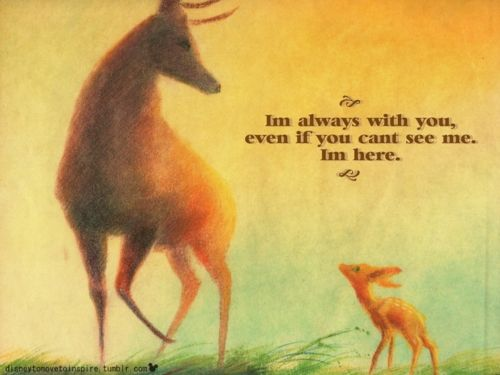 25 Best Ideas About Bambi Quotes On Pinterest Quotes By