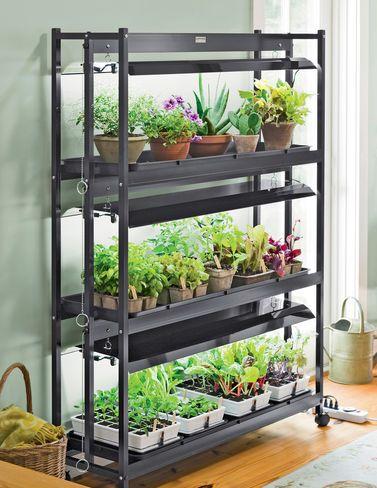 indoor gardening lights Indoor Vegetable Garden Tips, Starting Vegetable Gardens