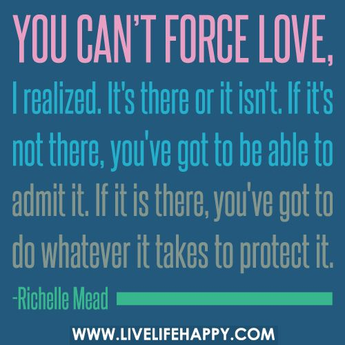 You cant force love, I realized. Its there or it isnt. If its not there, youve g