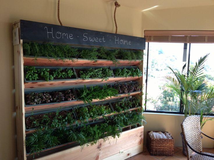 diy 6 foot indoor vertical garden diy pinterest on indoor vertical garden wall diy id=88660
