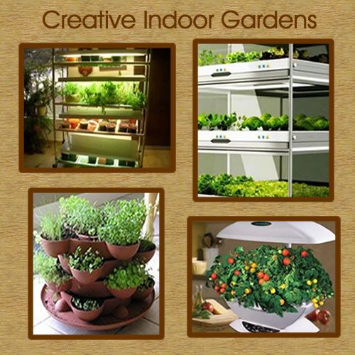 indoor vegetable garden ideas 25+ best ideas about Indoor vegetable gardening on