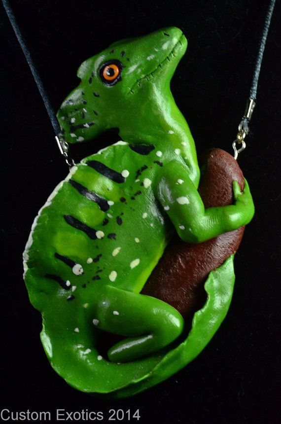 1000 Images About Polymer Clay Reptiles By Custom Exotics