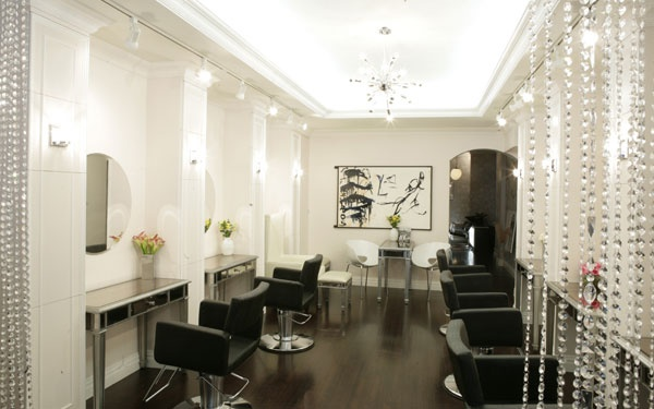 37 Best Images About Salons From Around The World On Pinterest