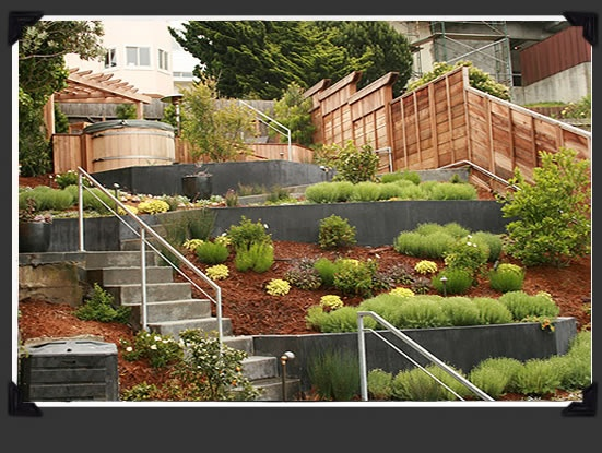 11 best images about Terraced front yard on Pinterest ... on Terraced Front Yard Ideas id=93647