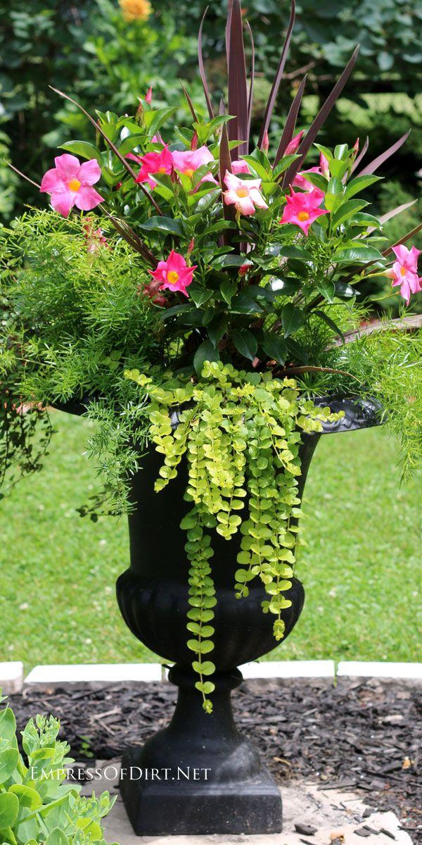 25 Best Ideas About Flower Planters On Pinterest Outdoor Planters Outdoor Flower Planters