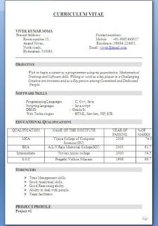 Charming Top 10 Resume Examples Ideal Vistalist Co