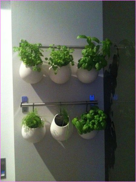 indoor herb garden 17 Best images about Indoor herb garden on Pinterest