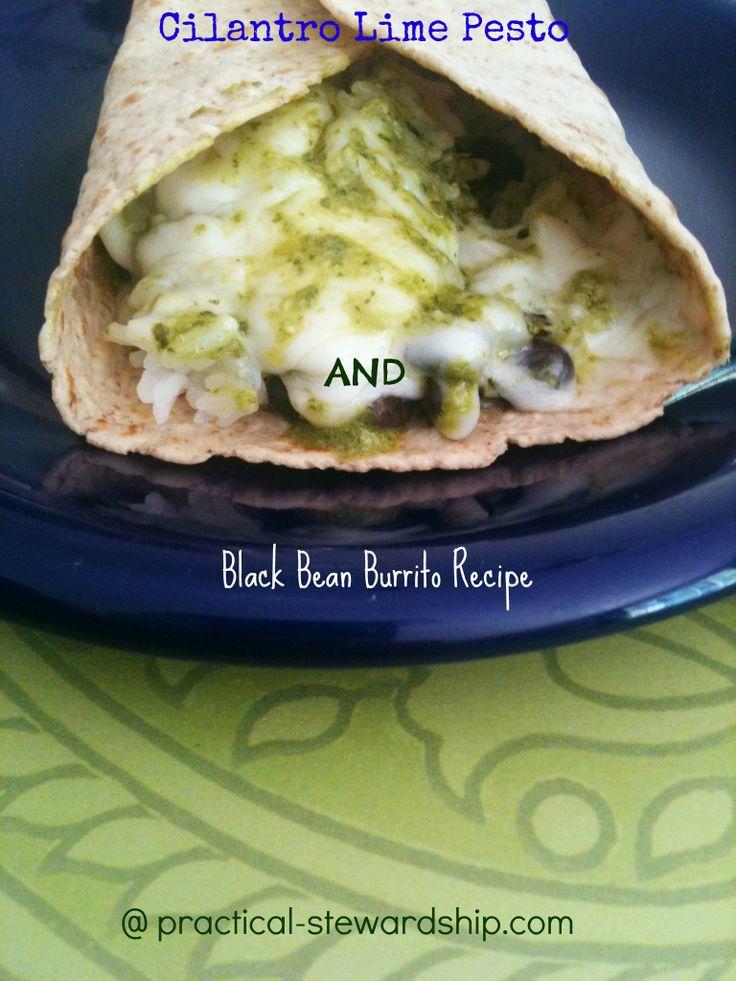Cilantro Lime Pesto Recipe & Black Bean Burrito Recipe