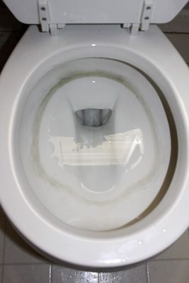 17 Best Ideas About Toilet Bowl Stains On Pinterest