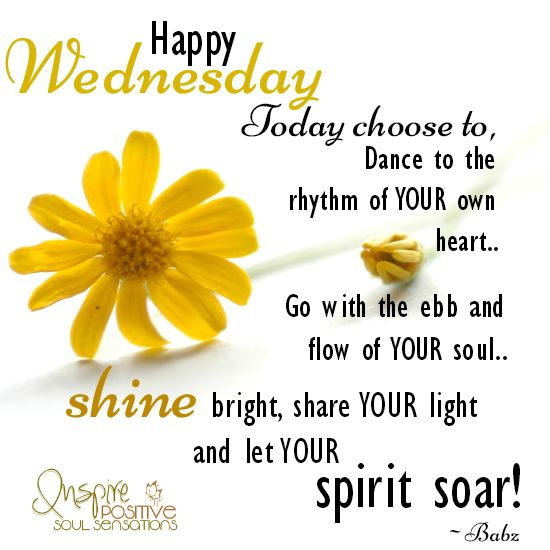1000+ ideas about Wednesday Hump Day on Pinterest | Happy ...