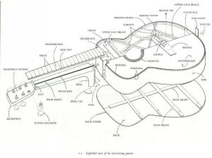 guitar drawing image | This is an exploded view of a steel
