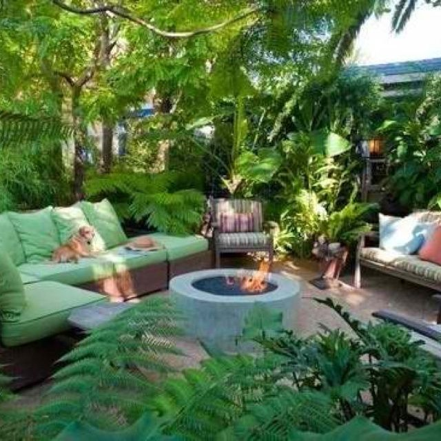 36 best images about TROPICAL GARDENS on Pinterest ... on Tropical Backyards  id=62317