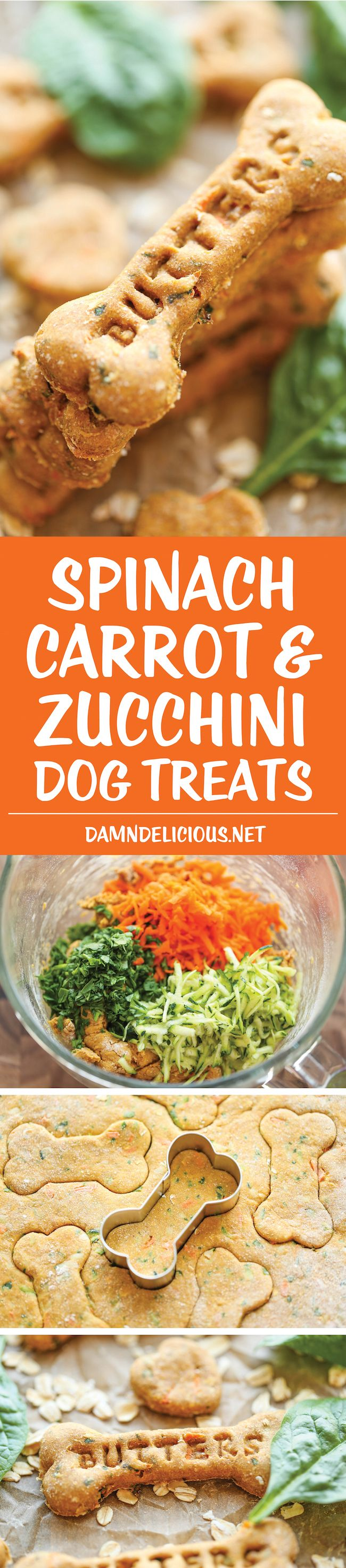 Spinach, Carrot and Zucchini Dog Treats – DIY dog treats that are nutritious, healthy and so easy to make. Plus, your pup will