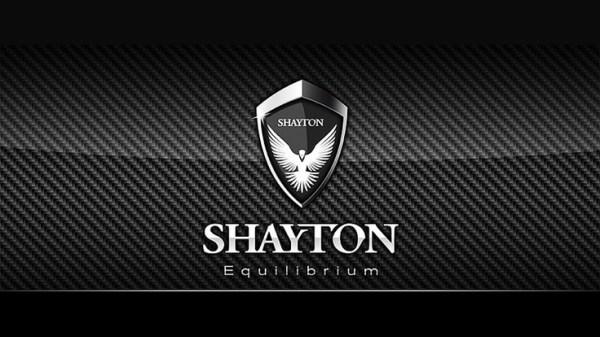 12 best images about SHAYTON EQUILIBRIUM on Pinterest ...