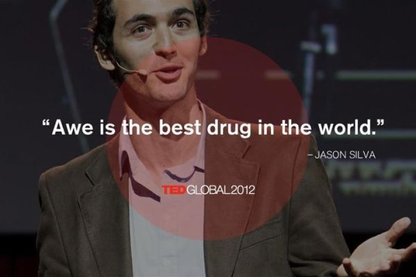 Jason Silva. | words to live by | Pinterest | The o'jays ...