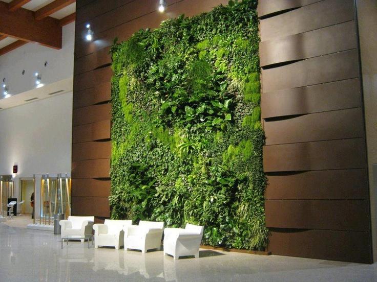 living plant wall art six walls pinterest i am on live wall id=57729