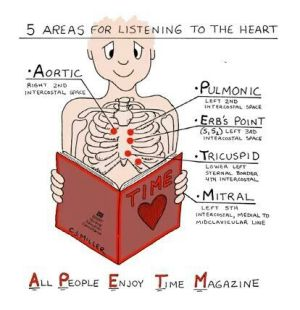 Mnemonic for heart sounds | NURSING | Pinterest | Heart