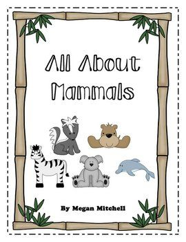Images About Mammals