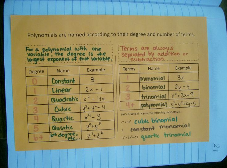 how to classify polynomials calculator
