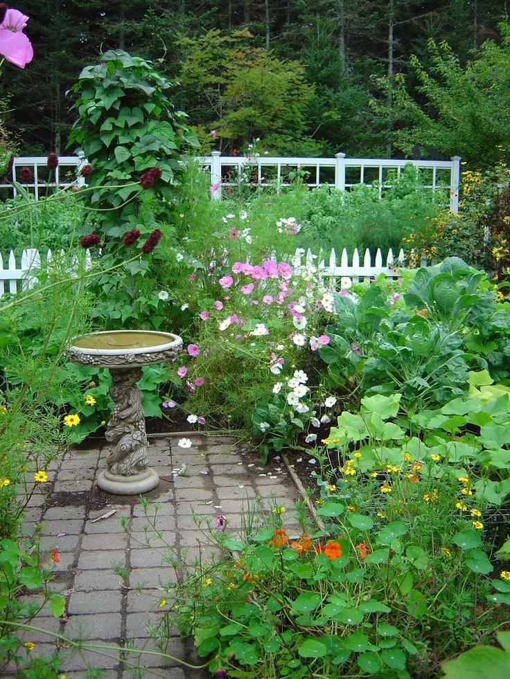 65 best images about potager kitchen gardens on pinterest on kitchen garden id=98905