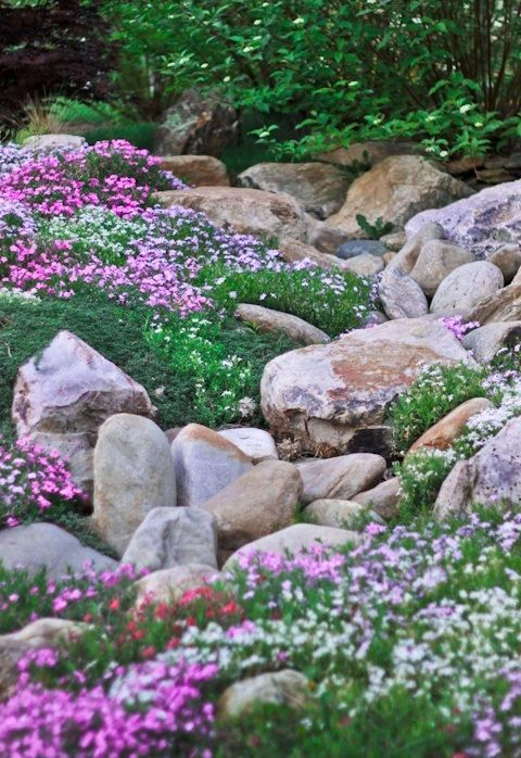 17 best images about rock garden ideas on pinterest on beautiful front yard rock n flowers garden landscaping ideas how to create it id=33833