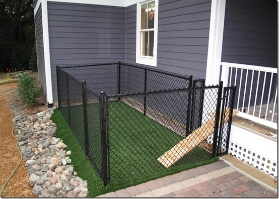 A Small (very Small) Backyard Dog Run Right Off The Porch