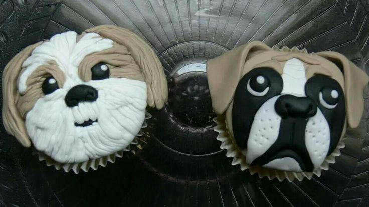 Shih Tzu And Boxer Cupcakes Pets We Love Cakes