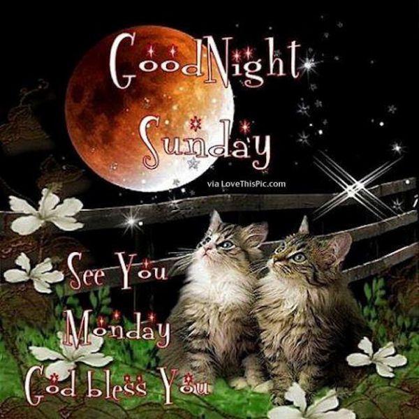 Good Night Sunday sunday goodnight sunday quotes goodnight ...