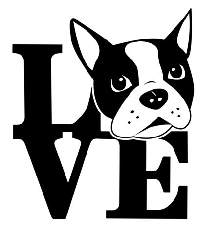 Download 1783 best images about Boston Terrier ️ Maisy on Pinterest ...