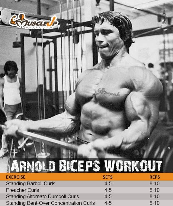17 Best images about Workouts on Pinterest | Muscle pharm ...