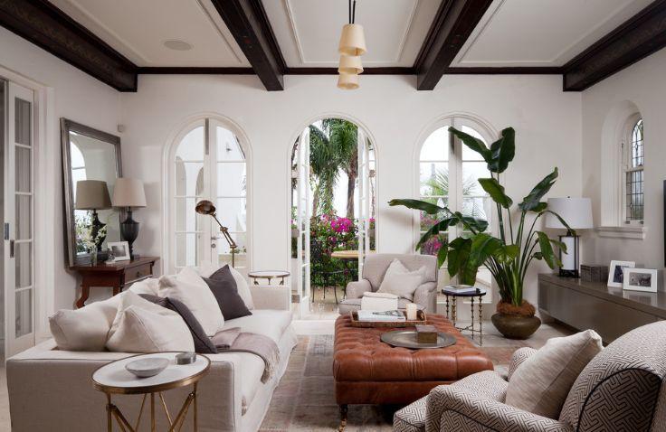 1000+ Ideas About Tall Indoor Plants On Pinterest